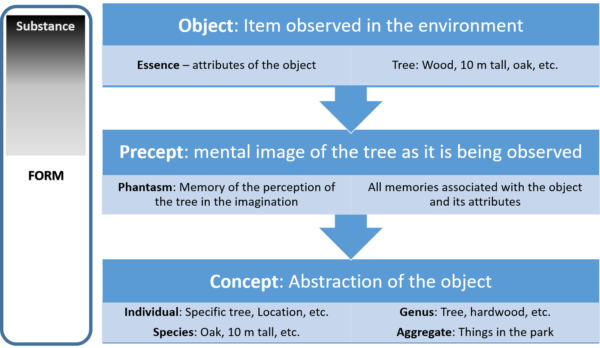 How Observation becomes Symbolic Language. Note how the substance desolves into form as the observed object is transcribed into the imagination.